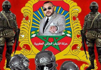 Junge marokkanische Royalisten; Schlägertruppen des Machtapparats.